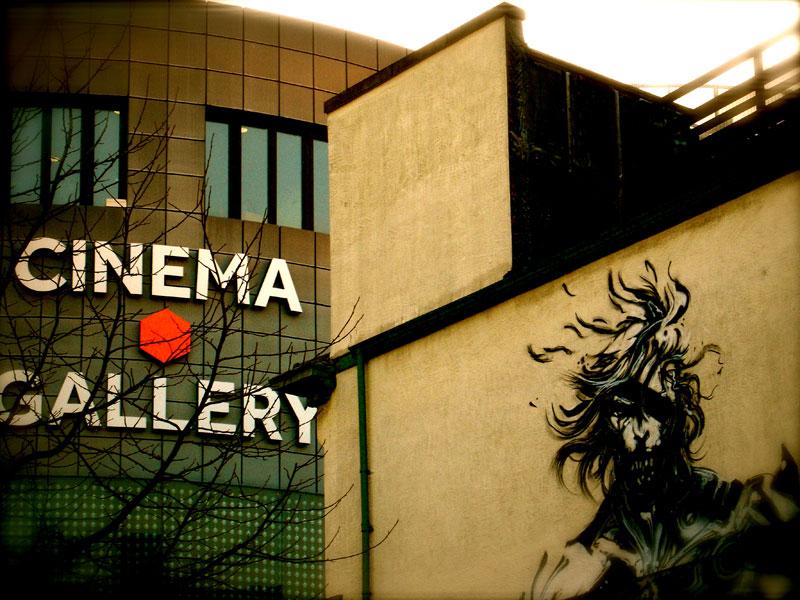 fact art gallery cinema